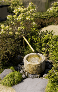 bamboo_fountain_showa_koen